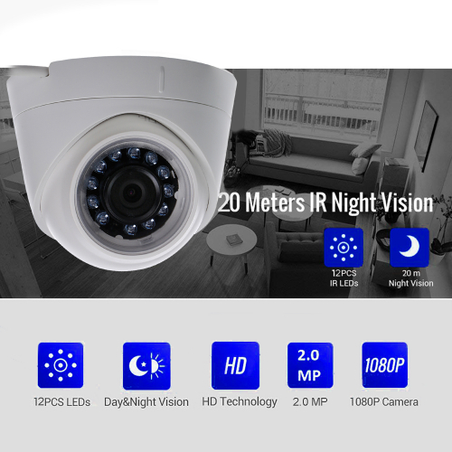 Zicom 2MP IP Dome Camera